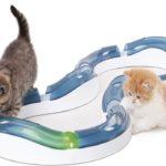 Ballschiene für Katzen