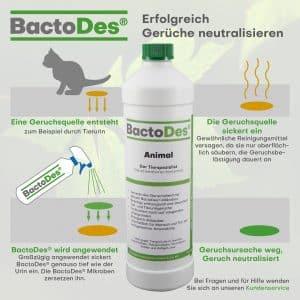 Bactodes Katzenurin Geruchsentferner