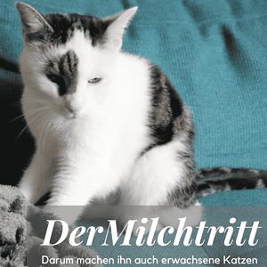 Milchtritt bei Katzen