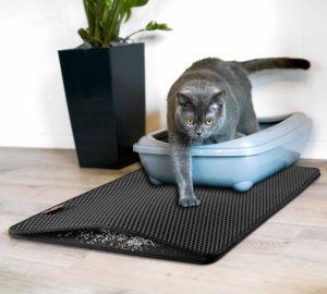 Schmutzfangmatte Katzenklo